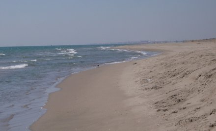 spiaggia_castelporziano